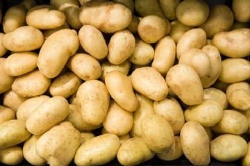 patates-neye-iyi-gelir