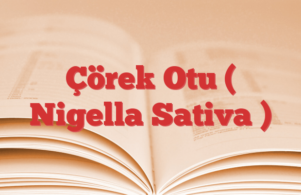 Çörek Otu ( Nigella Sativa )