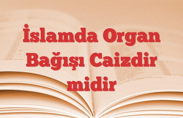 İslamda Organ Bağışı Caizdir midir