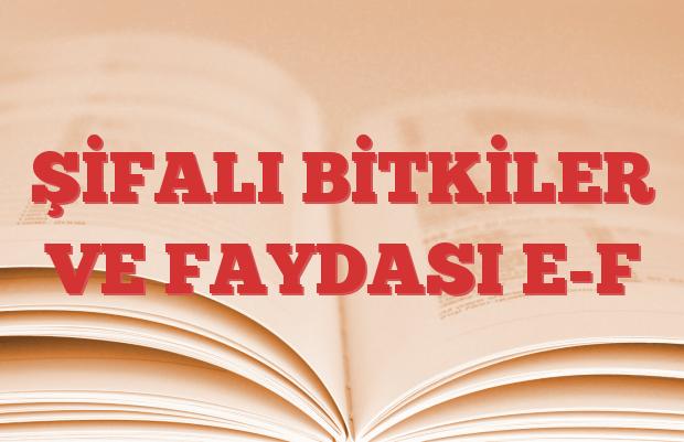 ŞİFALI BİTKİLER VE FAYDASI E-F