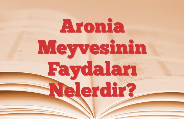 Aronia Meyvesinin Faydaları Nelerdir?