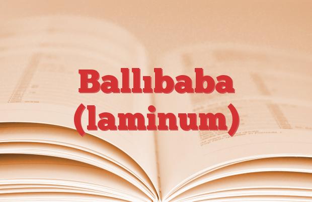 Ballıbaba (laminum)