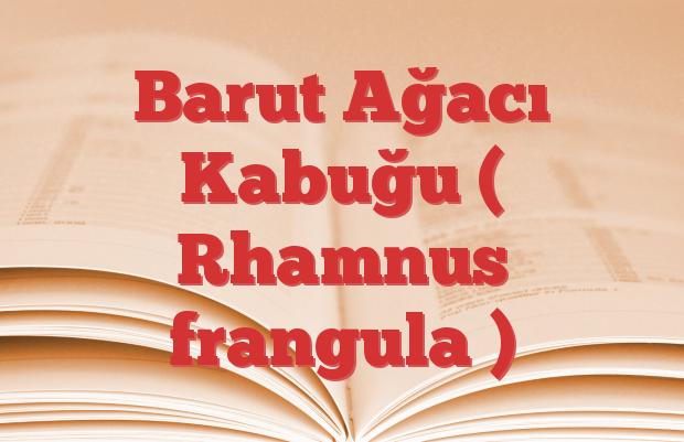 Barut Ağacı Kabuğu ( Rhamnus frangula )