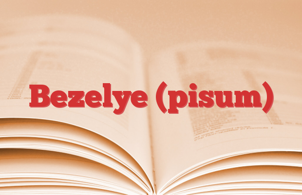 Bezelye (pisum)