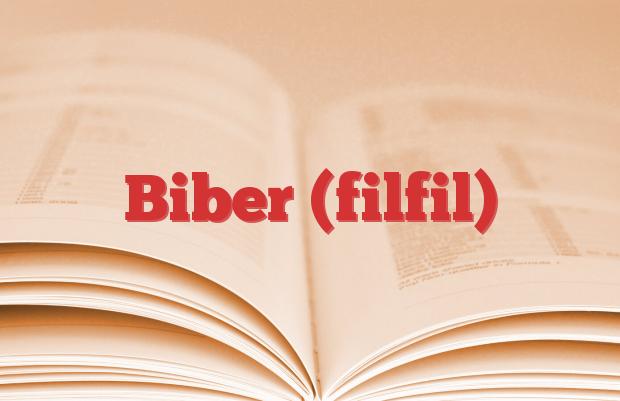 Biber (filfil)