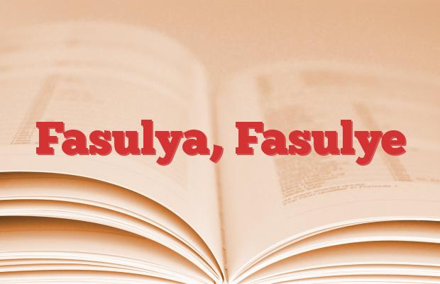 Fasulya, Fasulye