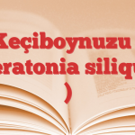 Keçiboynuzu ( Ceratonia siliqua )