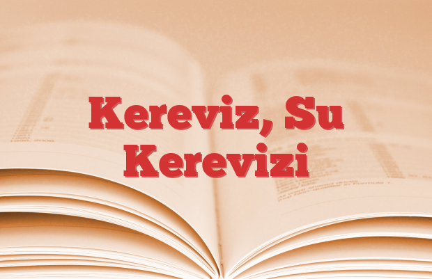 Kereviz, Su Kerevizi