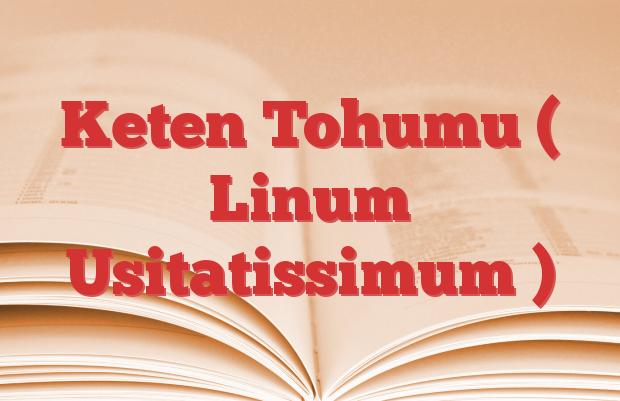 Keten Tohumu ( Linum Usitatissimum )