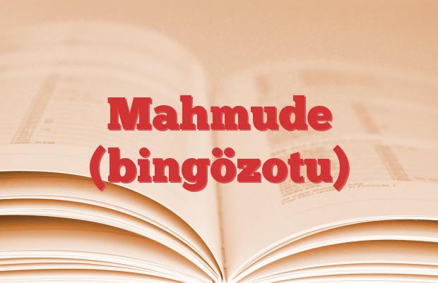 Mahmude (bingözotu)
