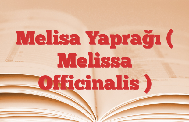 Melisa Yaprağı ( Melissa Officinalis )