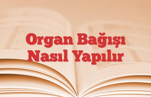 Organ Bağışı Nasıl Yapılır