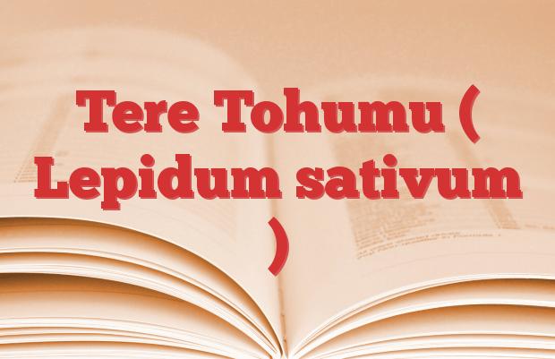 Tere Tohumu ( Lepidum sativum )