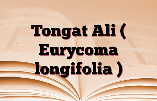 Tongat Ali ( Eurycoma longifolia )