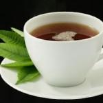 Avakado Yaprağı Çayı Nasıl Yapılır 150x150 AVAKADO YAPRAĞI ÇAYI NASIL YAPILIR ?