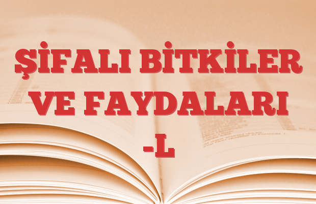 ŞİFALI BİTKİLER VE FAYDALARI -L