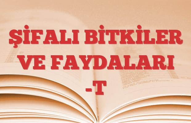 ŞİFALI BİTKİLER VE FAYDALARI -T
