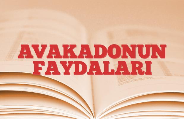 AVAKADONUN FAYDALARI
