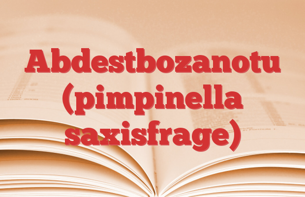 Abdestbozanotu (pimpinella saxisfrage)