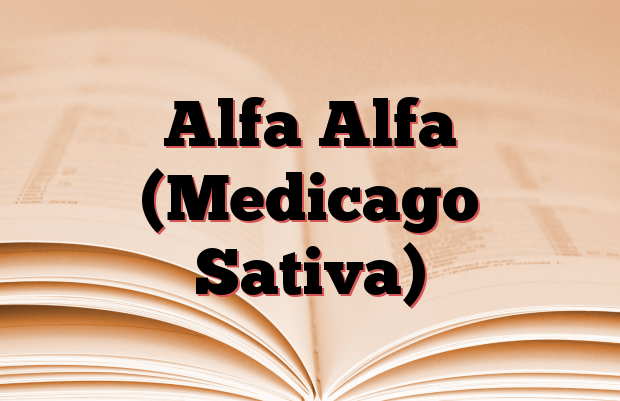 Alfa Alfa (Medicago Sativa)