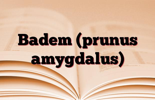 Badem (prunus amygdalus)