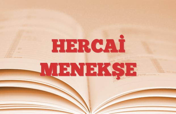 HERCAİ MENEKŞE