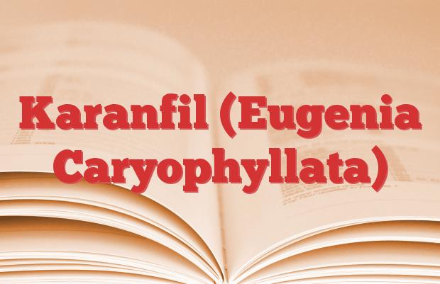Karanfil (Eugenia Caryophyllata)