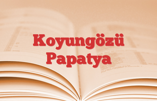 Koyungözü Papatya
