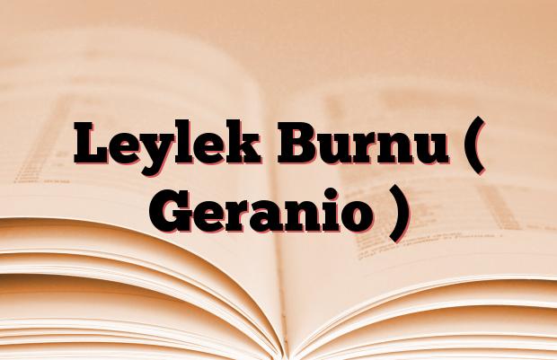 Leylek Burnu ( Geranio )