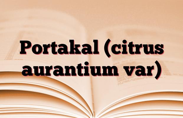 Portakal (citrus aurantium var)