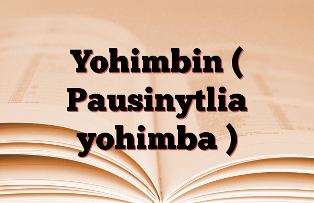 Yohimbin ( Pausinytlia yohimba )