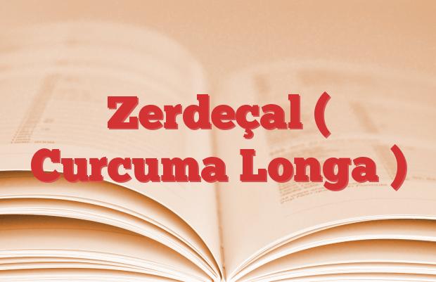 Zerdeçal ( Curcuma Longa )