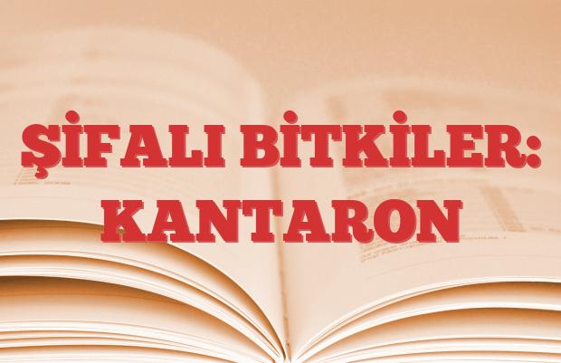 KANTARON