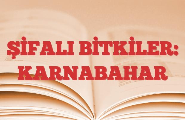 KARNABAHAR