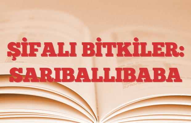 SARIBALLIBABA