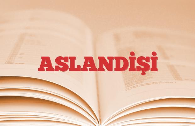 ASLANDİŞİ