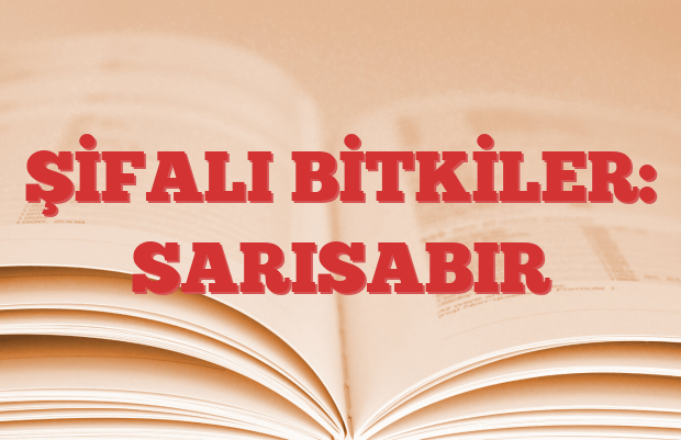 SARISABIR