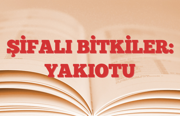 YAKIOTU