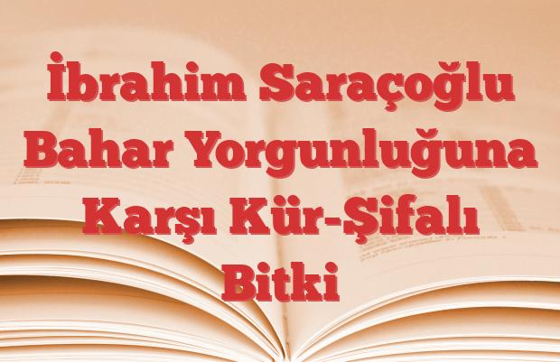 İbrahim Saraçoğlu Bahar Yorgunluğuna Karşı Kür-Şifalı Bitki