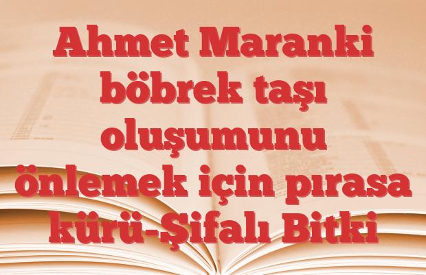 Ahmet Maranki böbrek taşı oluşumunu önlemek için pırasa kürü-Şifalı Bitki