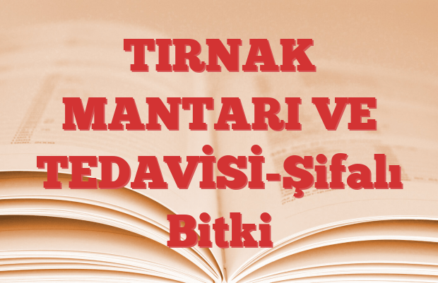 TIRNAK MANTARI VE TEDAVİSİ-Şifalı Bitki